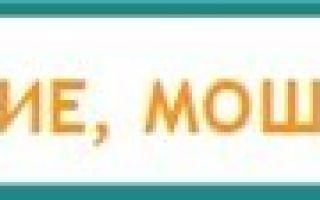 Какие бесплатные медицинские услуги входят в полис омс – можно ли получить компенсацию за неиспользованные услуги омс?