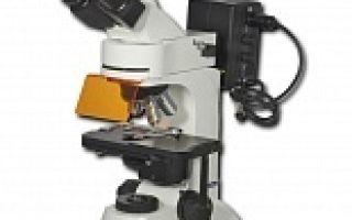 Профессиональные лабораторные микроскопы для медицинской лаборатории — купить правильно