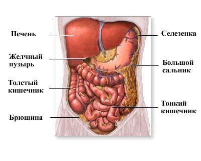 Симптомы перитонита - причины, диагностика, осложнения перитонита