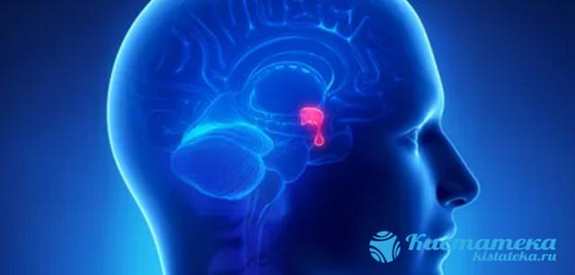 Нехирургические и хирургические методы лечения аденомы гипофиза – симптомы и диагностика патологии
