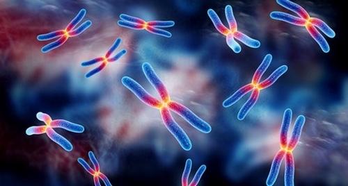 Врожденные пороки плода и хромосомные аномалии – виды пороков развития и причины