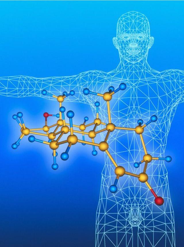Анализ крови на гормон ЛГ – нормы и отклонения в расшифровке анализа крови на лютеинизирующий гормон