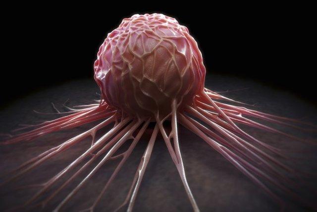 Лекарство от рака победит онкологию: последние новости и перспективы