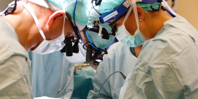 Пересадка матки и последующая беременность – трансплантация матки в России и в мире