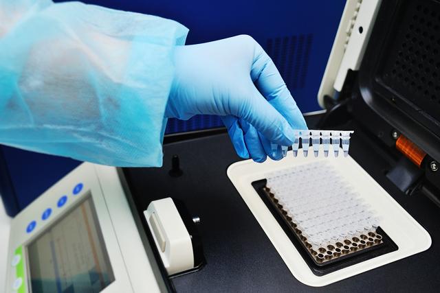 Анализ крови на хламидии – расшифровка результатов, отклонения и нормы