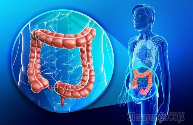 Рак прямой кишки – симптомы, стадии и диагностика заболевания