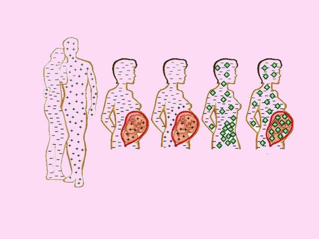 Совместимость групп крови для переливания и зачатия ребенка