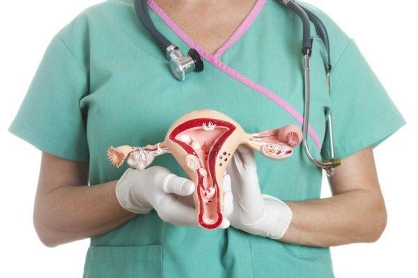 Полипы в матке – причины, симптомы, основные методы лечения полипов в шейки матки
