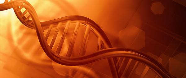 Как наследуется гемофилия и современные способы лечения заболевания