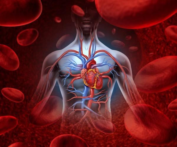 Аневризма сердца у детей – симптомы, диагностика и методы лечения новорожденных и детей