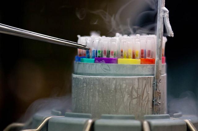 Заморозить больного на время операции – миф или реальность?